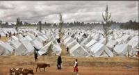 Shelter & Settlement Planning Course